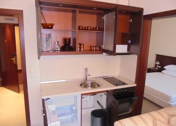 Spacious furnished one-bedroom  apartment in DownTown in Bansko